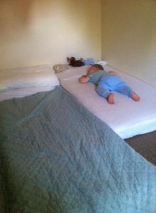 floorbed13m